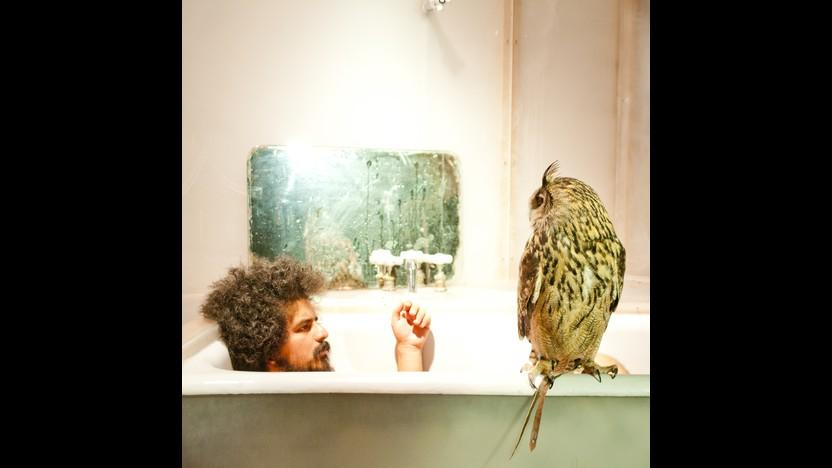 Helado Negro with Owl